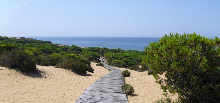 Sol y playas